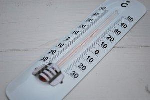 画像2: 温度計 グリーン・ホワイト 生活の必需品、温度計