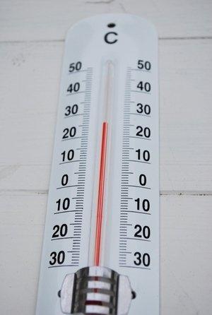画像1: 温度計 グリーン・ホワイト 生活の必需品、温度計