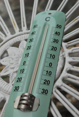 画像3: 温度計 グリーン・ホワイト 生活の必需品、温度計